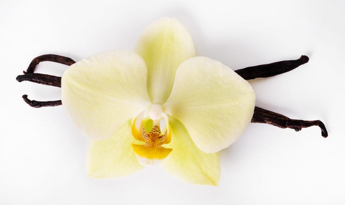 quels sont les avantages de la vanille ?