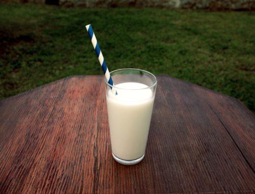 Quel type de lait devrais-je boire?