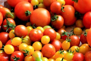 Les tomates : un aliment pour une vie saine