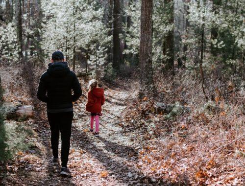 Top 3 des activités pour sensibiliser ses enfants à écologie